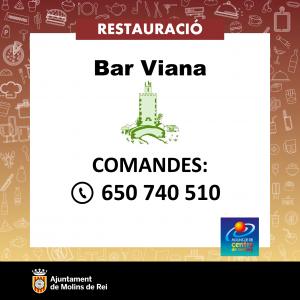 fitxa-Viana